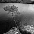 Loch Maree, Scotland 2014