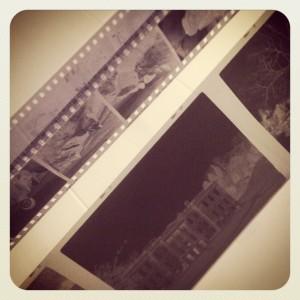 Processed films