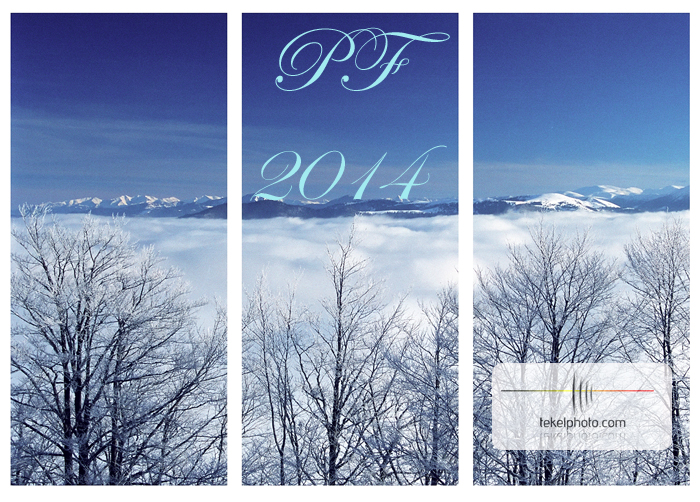 Happy New Year PF2014